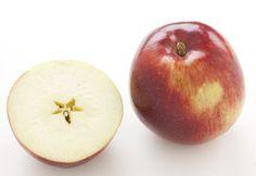 Quelle pomme pour quel usage? Voici un guide à télécharger pour faire le bon choix lorsque vient le temps de #cuisiner la #pomme.
