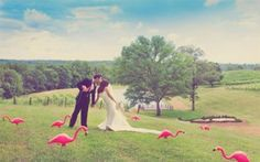 10  Easy Steps to a Green Wedding