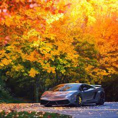 How cool is this Lamborghini