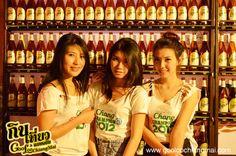 Chang Export  - info about Thailand and Koh Samui: http://islandinfokohsamui.com/
