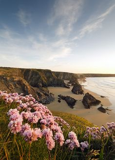 Bedruthan Flower Show by peterspencer49 on Flickr.