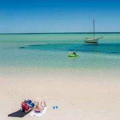Denham WA -must see - Shark Bay world heritage site Perth Western Australia, Australia Travel, Road Trip Destinations, World Heritage Sites, West Coast, Shark, Melbourne, Tourism, Places To Visit
