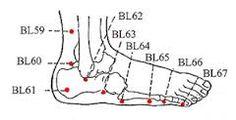 Billedresultat for bl 23 meridian acupuncture
