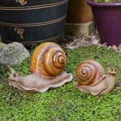 The Hosta Loving Over-sized Realistic Resin Snail Garden Ornaments Snails In Garden, Garden Snail, Snail Costume, Animal Garden Ornaments, Fish Mounts, Biscuit, Snail Art, Metal Chicken, Pottery Animals