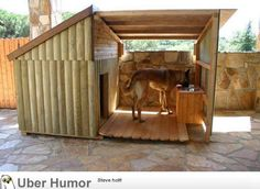 Now that's a dog house.