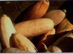 Crockpot Recipes, Soup Recipes, Vegan Recipes, Vegan Meals, Onion Vegetable, Vegetable Dishes, Banana Squash Soup Recipe, Food Out, Good Food