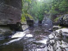"""Past the falls sits what many call """"The Grand Canyon of Michigan,"""" or Canyon Gorge."""