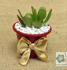 Lembrancinhas ecológicas para seu evento: vasinhos com plantas naturais para casamentos, aniversários, festas, nascimentos, batizados, promoções