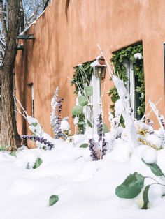 Warm Up in the Southwest: Why You Should Visit Santa Fe in the Winter Dear Santa, Santa Fe, Sante Fe New Mexico, Chocolate House, Visit Santa, Canyon Road, New Mexican, Fes, Installation Art
