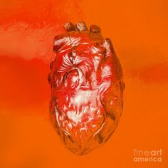 Digital illustration of a human heart sketched out on red orange background. Anatomy art by Ryan Jorgensen