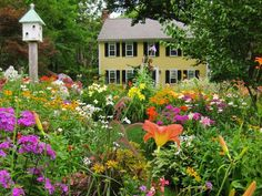 Check out these beautiful front and back yards and get ideas for your own outdoor space.  By Marie Hofer