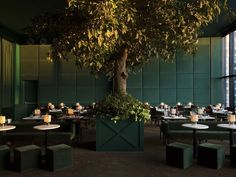 Casa Cruz, New York | restaurant design | green | indoor greenery | tree