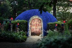 What a beautiful secret garden
