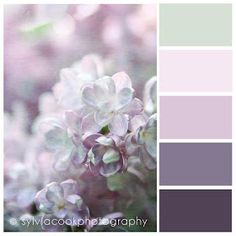 Inspirations: loving color palettes color inspiration in 201 Palettes Color, Colour Schemes, Color Combos, Basement Color Schemes, Lilac Bedroom, Bedroom Colors, Master Bedroom, Purple Bedrooms, Lilac Nursery