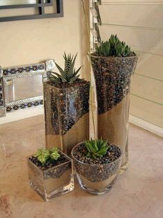 Small garden in a glass bowl - arrangement ideas with succulents - best decoration ideas - Garden Care, Garden Design and Gardening Supplies Outdoor Cactus Garden, Succulent Gardening, Succulent Terrarium, Garden Soil, Garden Care, Garden Plants, Container Gardening, Outdoor Gardens, Terrarium Ideas