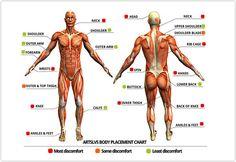 Cómo soportar el dolor durante una sesión de tatuaje - http://www.tatuantes.com/como-soportar-el-dolor-durante-una-sesion-de-tatuaje/