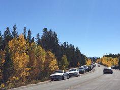 #Colorado #fall #colors