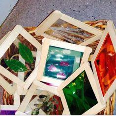 make own nature slides for light table