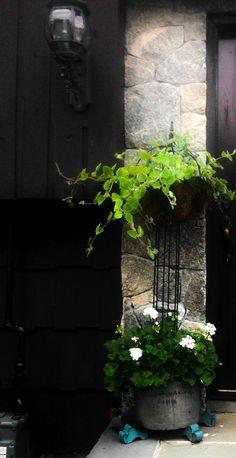 Front door planter...