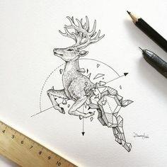 Animais e geometria nas ilustrações de Kerby Rosanes