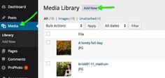 مدیران سایت ها فکر میکنند که ساخت صفحات پی دی اف برای سایت آن ها مفید می باشد مقاله لینک به فایل PDF این کار را برای بهینه سازی سایت مناسب نمی بیند   #سئو #سئو_سایت #بهینه_سازی_سایت #ایران_سئو.