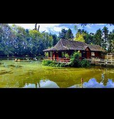 Quedo guapisima buen disparo D2 #travel #naturaleza #atardeceres #green #view #photograpy #montaña #nature #landscapelovers #places  #travelingland #happy #flower #colonial #brige #viva_hdr #colombia #orange #colori #invierno #sea #scenary #vacanze #exquisite #Bigsur #tree #adventure #naturephoto  #roadtrip #calocals - posted by Tatiana Munoz https://www.instagram.com/ytata_travel - See more of Big Sur, CA at http://bigsurlocals.com