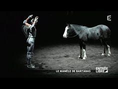 Quand Bartabas parle des chevaux... :)