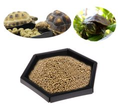 Description: 100% brand new and high quality Features: Designed for reptiles daily watering. Mad...