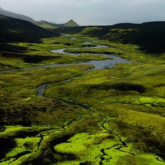 Neon green moss juxtaposed against black lava, just north of the Myrdalsjokull ice cap in the Icelandic highlands