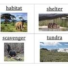 These vocabulary cards match the words and definitions taught and assessed in NYS Engage NY Listening and Learning Strand, Grade 1, Domain 8: Anima...