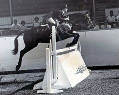 Susie Hutchison was Reserve Champion in the Junior Hunter division at the Madison Square Garden National Horse Show. But this photo is from California.