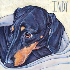 """Indy the Miniature Dachshund Pet Portrait Painting in Acrylic on 12"""" x 12"""" Stretched Canvas from Pet Portraits by Bethany."""