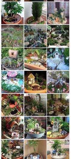 Over 100 miniature and fairy gardens from all over the world! #miniaturegardens