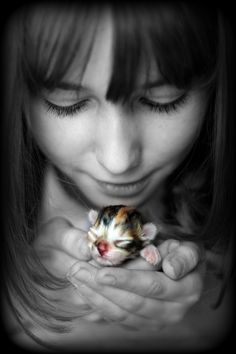 Newborn kitten, so sweet : )