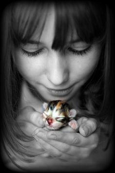 Newborn kitten, so sweet : )