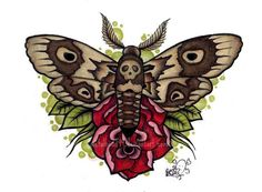 Moth Tattoo Design done with Prismacolor pencils Please DO NOT USE!!! Thankyou