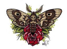 Moth by Metalhead99 on DeviantArt