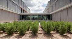 El Campus de La Moraleja del BBVA tiene certificado LEED Oro