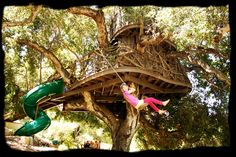 Image detail for -... Tree houses designed with safety and the tree's well being in mind