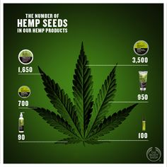 Hemp Facts! Discover how many hemp seeds there are in your favourite hemp product! #hemp