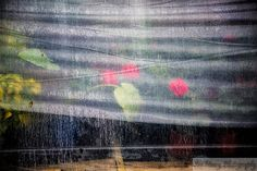 """Sue Henry Photography - Blog - StormyWeather    """"In our lives there is bound to come some pain, surely as there are storms and falling rain; just believe that the one who holds the storms will bring the sun.""""    ~ unknown"""