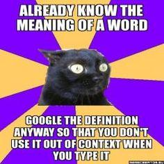 chronic anxiety cat meme - photo #24