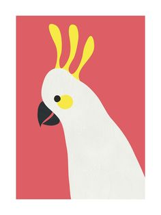 Hello Cocky! Wall Art Prints by Catherine Culvenor | Minted: Sulfur-crested cockatoos never fail to cheer me up with their antics. This cheeky parrot is inspired by the white and yellow trouble makers, but won't make anywhere near as much noise.