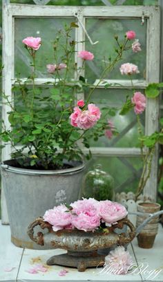 wonderful use of galvanized bucket and other old aged metals