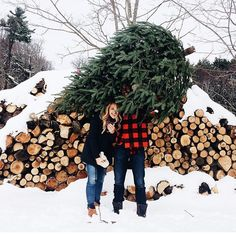 Who got their Christmas tree this weekend? #regram @laurenswells #flashesofdelight