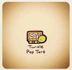 Turtle pop tart                                                                                                                                                                                 More