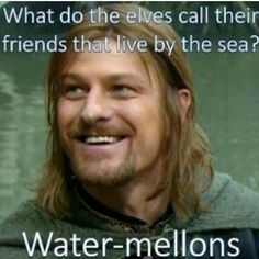 Here are the top funny memes from LOTR READ 25 funny memes jokes hilarious laughing Water Mellon, Top 20 Funniest, One Does Not Simply, J. R. R. Tolkien, Funny Memes, Hilarious, Nerd Funny, Silly Jokes, Movie Memes