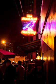 The Best of Miami Nightlife 🎶🍸 Some of Miami's best nightlife experiences can all be found in Downtown Miami. Check out our list of top must-see spots. Downtown Restaurants, Downtown Miami, Live Music, Good Music, Night Club, Night Life, Miami Music, Miami Nightlife, Little Havana