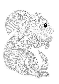 Farbung Von Tieren Zu Drucken Das Eichhornchen Mandale Das Drucken Eichhornc Herbst Ausmalvorlagen Malvorlagen Zum Ausdrucken Kostenlose Ausmalbilder