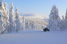 La Finlande et sa région phare, la Laponie où réside le Père Noël, est l'une des destinations qui porte le mieux les couleurs de l'hiver.